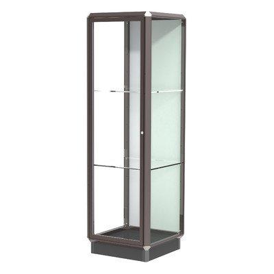 Waddell Prominence Series Lighted Floor Display Case Frame Color: Dark Bronze