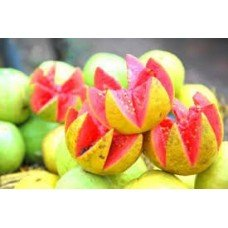 (Pink Guava Amazonian Fruity - 1794 - Premium Fragrance Oil - 2 oz - Candle Making, Soap Making, Home and Office Diffusers, Hair and Body)