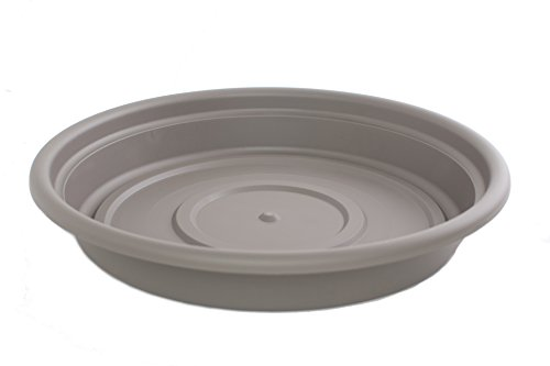 Bloem SDC20-60 Dura Cotta Plant Saucer, 20-Inch, Peppercorn by Bloem
