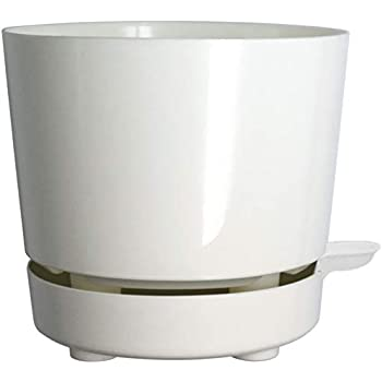 Amazon Com Full Depth Round Cylinder Pot White 10 Inch