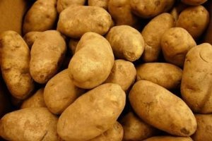 (POTATOES RUSSET FRESH PRODUCE 10 LBS)