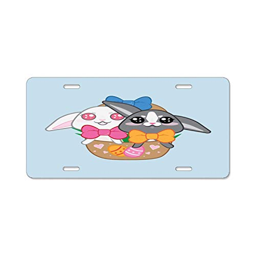 YEX Abstract Twin Easter Bunnies License Plate Frame Car Licence Plate Covers Auto Tag Holder 6