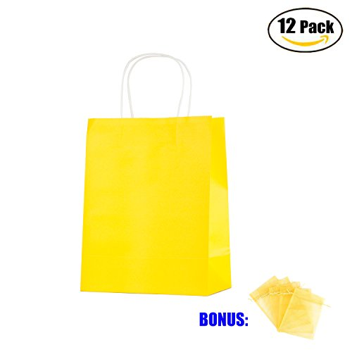 Anleolife 12 Medium Kraft Paper Kids Gift Bags, Assorted Goody Tote Loot Set for Party Favor Supplies on Boys/Girls Birthday, Baby Showers, Retails Shopping Restaurant Takeout, Store Owner (Yellow)