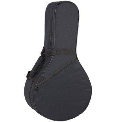 Amazon.com: ESTUCHE STYROFOAM BANDURRIA (69,5x36,5x16cm): Musical Instruments