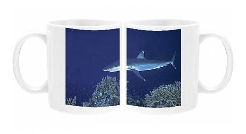 Photo Mug of Silvertip Reef Shark - these beautiful sharks grow to 3 plus meters in (Silvertip Reef Shark)