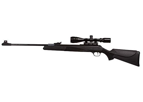 Diana RWS 34P Striker Combo air rifle