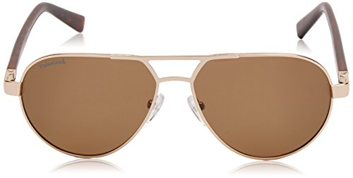 Or Brown Gold Homme Sunoptic Lunettes Pilote Rvq1txwnOa