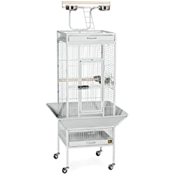 Prevue Hendryx 3151W Pet Products Wrought Iron Select Bird Cage, 18-Inch by 18-Inch by 57-Inch