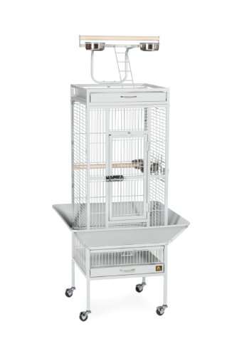 Pet Products Bird (Prevue Hendryx 3151W Pet Products Wrought Iron Select Bird Cage, 18-Inch by 18-Inch by 57-Inch)