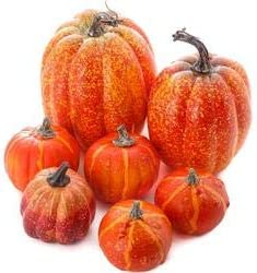 Amazon.com: Factory Direct Craft Package of 7 Assorted Size Artificial Pumpkins for Halloween, Fall and Thanksgiving Decorating: Home & Kitchen