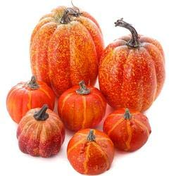 Factory Direct Craft Package of 7 Assorted Size Artificial Pumpkins for Halloween, Fall and Thanksgiving Decorating]()