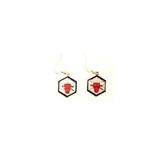 Siskiyou NBA Officially Licensed Logo Dangle Earrings (Chicago Bulls) (Chicago Bulls Earrings For Men)