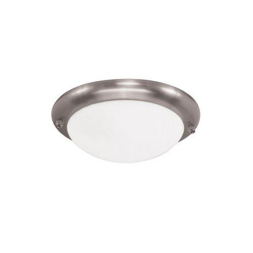 Brushed Nickel Sea Gull Lighting 16148EN3-962 One Ceiling Fan Light Kit