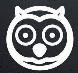 Owl Vinyl Decal Sticker|WHITE|Cars Trucks SUV Laptops Wall Art |5