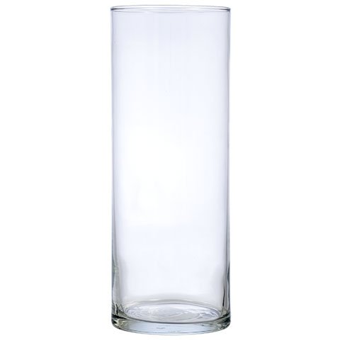 Amazon Com 7 Inch Clear Glass Cylinder Floral Straight Vases Set Of 12 Home Amp Kitchen
