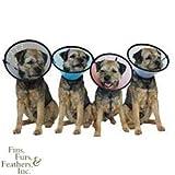 Company Of Animals Smart Collar Rigid Elizabethan - Size 5