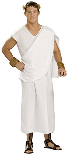 [Forum Novelties Men's Gods and Goddesses Unisex Costume Toga, White, Plus Size] (Animal Halloween Costumes Men)