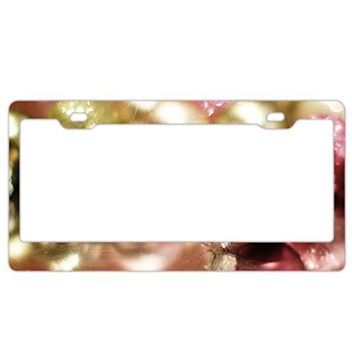 KSLIDS Christmas Ornaments License Plate Novelty Auto Car Tag Vanity Gift Men