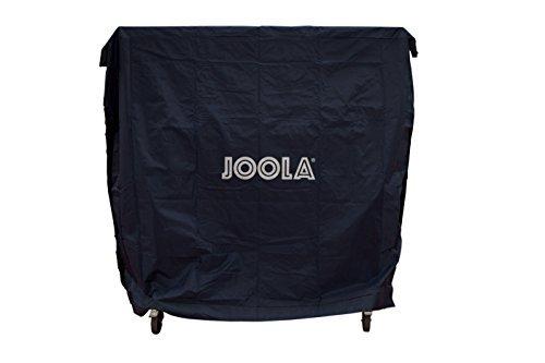 Review JOOLA Dual Function Indoor