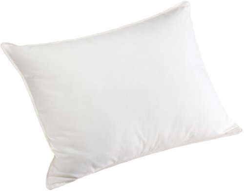 Carpenter Beyond Perfect Synthetic Down and Visco Pillow by Carpenter