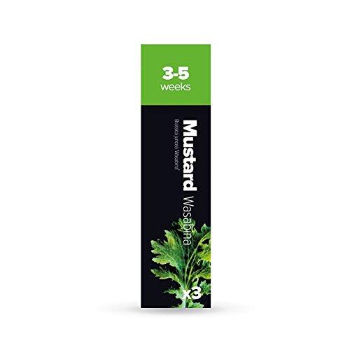 Kräuter-Samenkapseln für Plantui 6 Smart Garden, Blattsenf Wasabina