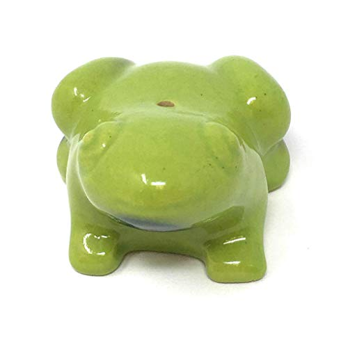 Maroma Frog, 1 EA