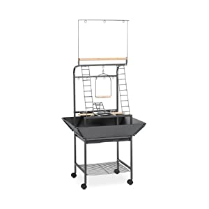 Prevue Pet Products Small Parrot Playstand 3181 Black Hammertone, 17.625-Inch by 16-1/2-Inch by 59-Inch 35