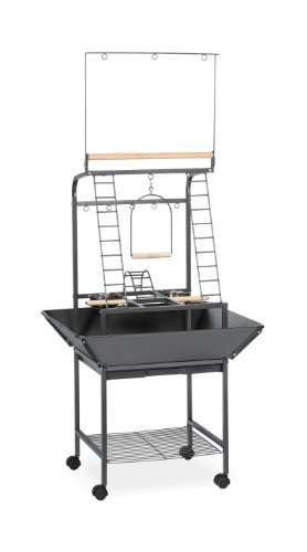Prevue Pet Products Small Parrot Playstand 3181 Black Hammertone, 17.625-Inch by 16-1/2-Inch by 59-Inch ()