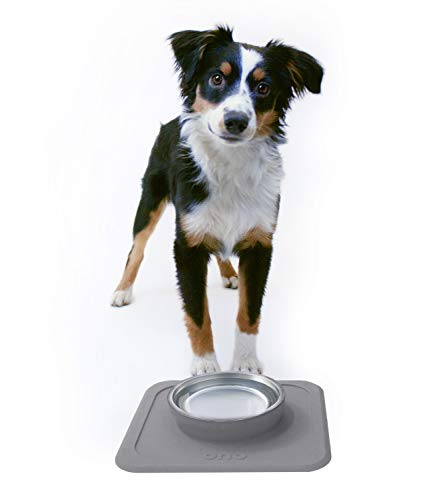 Ono Good Bowl Single Feeder - Small to Medium Pets -