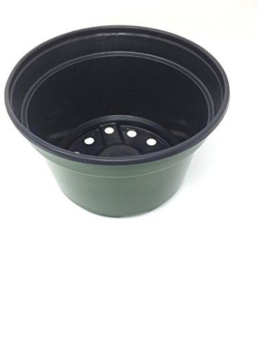 8 inch plastic pots - 6