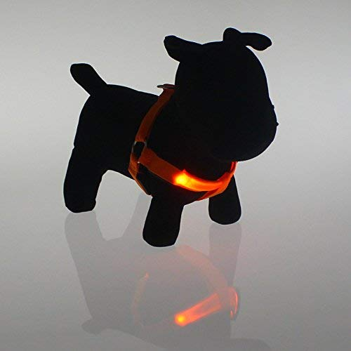 Cat Scratcher Cardboard The Dog Collar Pet Harness Light Light Traction Rope Leash,M,orange Cat Scratcher Toy