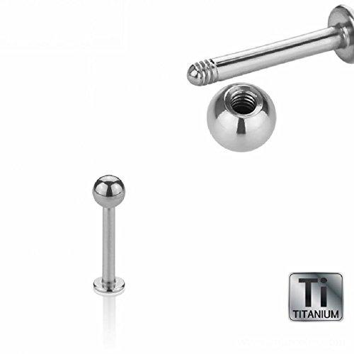 Ti-Gloss Titan - Labret (Piercing Stab für u.a. Lippen-, Nasen-, Conchpiercings silber)