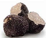 Fresh Black Italian Summer Truffles (4 Ounce)