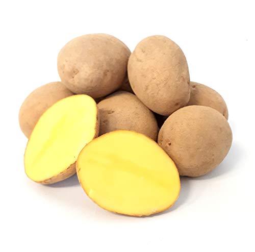 Kartoffel Afra mehlige Kartoffeln 1-25 Kg deutsche Speisekartoffel perfekt für Kartoffelsuppe, Püree, Gnocchi, Knödel…