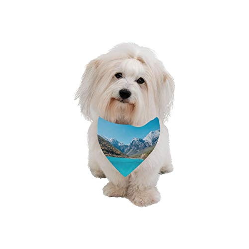 WIEDLKL Pet Dog Cat Bandana Yunnan City Free Travel Romantic Color Fashion Printing Bibs Triangle Head Scarfs Kerchief Accessories for Large Dog Pet Birthday Party Easter Gifts