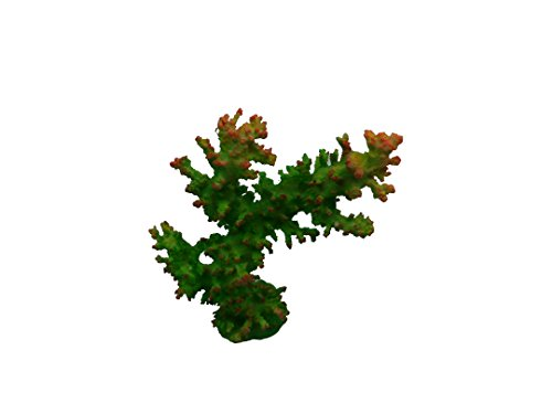 Acropora Ornament (Imitation Acropora Coral FS356)