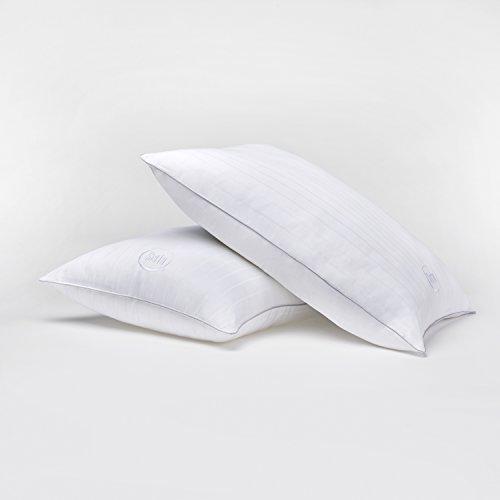 Serta Perfect Sleeper Platinum Hotel Pillow 2 Pack (Standard/Queen)