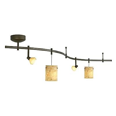 Tiella 4 Light Decorative Flexible Track Light