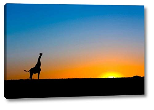Giraffe Silhouetted Against The Setting Sun, Lethiau Valley, Central Kalahari Game Reserve, Botswana by Vincent Grafhorst - 19