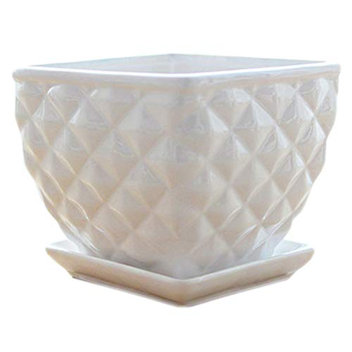 Better-way Square Modern Ceramic Garden Flower Pots Succulent Planter Decorative Plant Containers with Saucers mid Century Decor (Hobnail Textured)