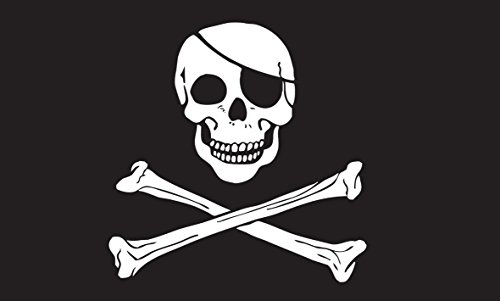 Black Pirate Skull 12 X 18