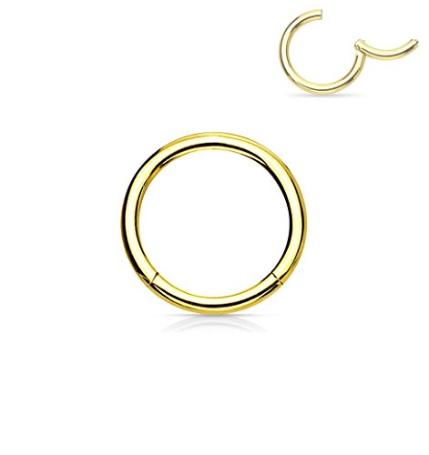 Forbidden Body Jewelry 18G 6mm Surgical Steel Hinged Easy Use Hassle Free Seamless Hoop Body Piercing Ring, Gold Tone