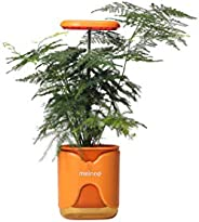Meinno A Tiny Garden in Your Palm. Growing is Fun Again.Telescopic LED Lights, Multiple mounts, and self-Water
