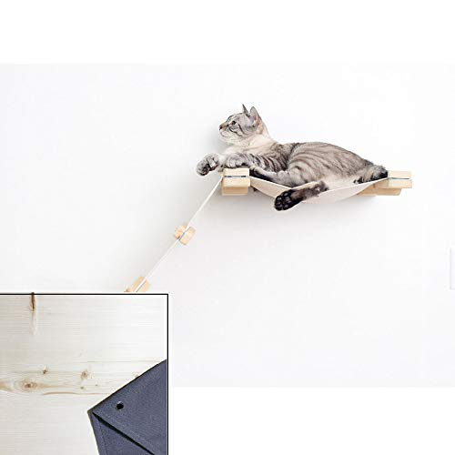 (CatastrophiCreations Cat Mod Lift - Cat Hammock & Climbing Activity Center - Handcrafted Wall-Mounted Cat Tree Shelves)