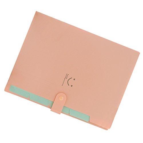 Amazon.com : TOOGOO(R) Kawaii FoldersStationery Carpeta File Folder 5layers Archivadores Rings A4 Document Bag Office Carpetas£¨Pink£ : Office Products
