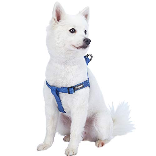 Blueberry Pet 19 Colors Step-in Classic Dog Harness, Chest Girth 20″ – 26″, Marina Blue, Medium, Adjustable Harnesses for Dogs