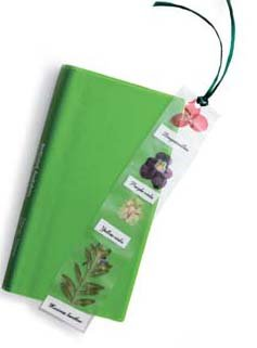 Pressed Flower Bookmark Craft Kit (makes 25 projects)