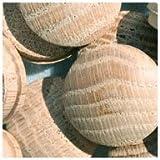 WIDGETCO 1'' Oak Button Top Wood Plugs