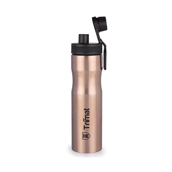 Trigal Elina Single Walled Stainless Steel Water Bottle Set, 800 ml, Copper