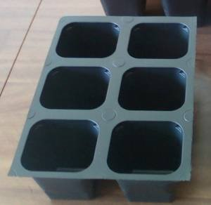 Seed starter trays 432 LARGE CELLS total 72 trays of 6 cells each